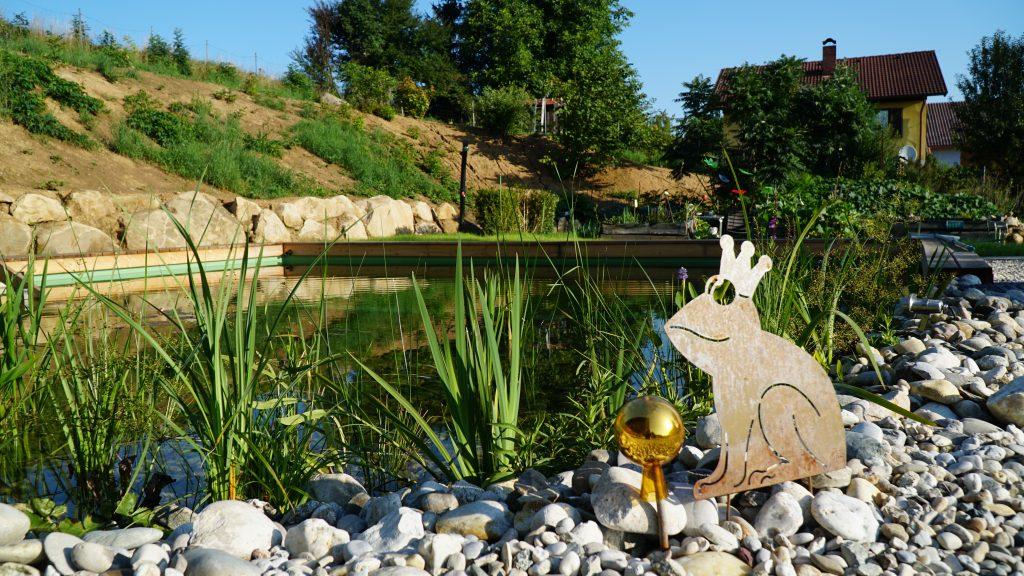 Waldviertel Ferienwohnung Garten Schwimmteich